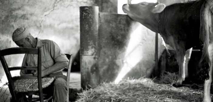 I montanari, una storia in dialetto